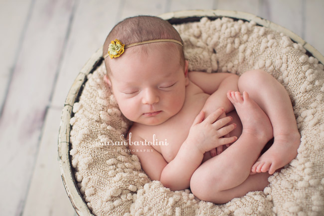 Boston Baby Photographer