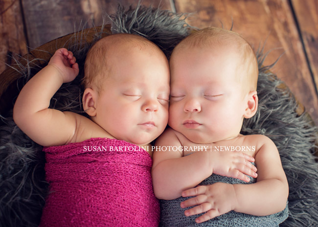 Susan Bartolini - Boston Newborn Photographer