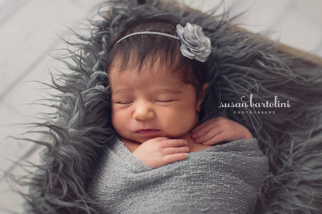 Boston Newborn Photographers